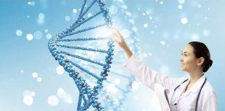 Phân tích DNA